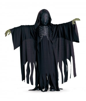 HARRY POTTER DEMENTOR DLX DZIECIĘCY HARRY POTTER