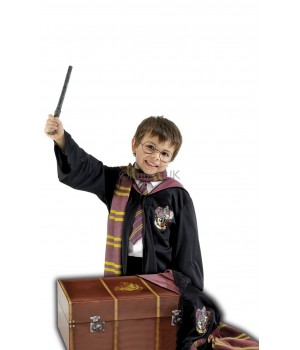HARRY POTTER KUFER